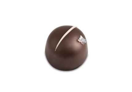 פרלין שוקולד מריר עם קרמל ומלח גס